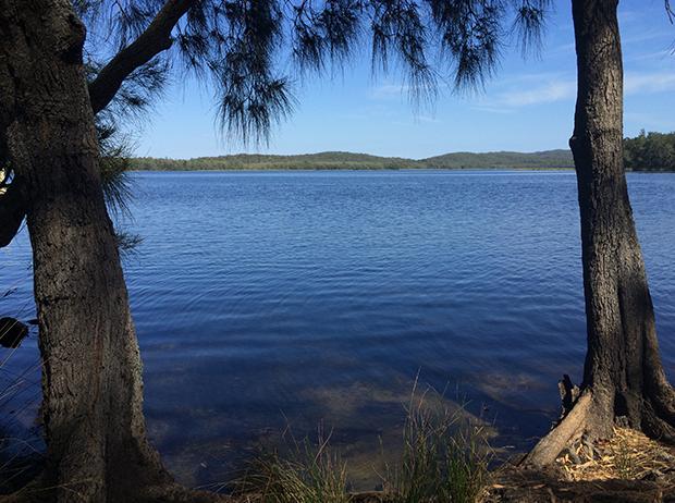 NSW_03